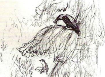 Серая ворона  Картинка 9636111